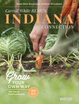 Indiana Connection Cover